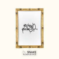 You Know You Like It - DJ Snake